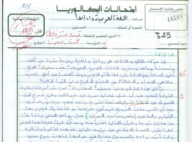 الامتحان الوطني للغة العربية الدورة العربية  2013 + التصحيح + نموذج عمل متميز  — مسلك الأداب