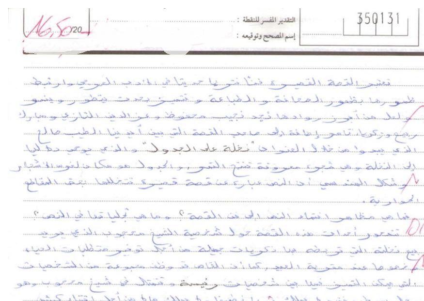 الامتحان الوطني في مادة الأدب الدورة العادية 2013 + التصحيح + عمل مميز 16.5/20— مسلك اللغة العربية