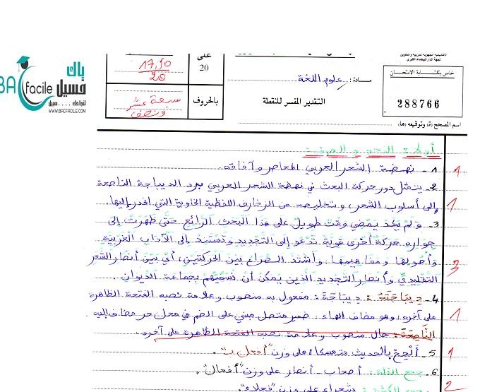 الامتحان الوطني في مادة علوم اللغة الدورة العادية 2013 + التصحيح + عمل مميز 17.50/20— مسلك اللغة العربية